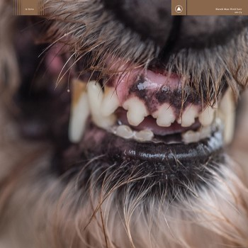 Blanck Mass: <br>World Eater [CD]