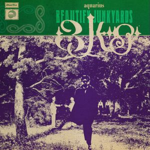 Beautify Junkyards: The Invisible World of Beautify Junkyards [LP]