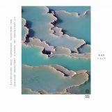 Arp: ZEBRA [CD]