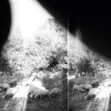 Godspeed You Black Emperor!: Asunder, Sweet and Other Distress [LP]