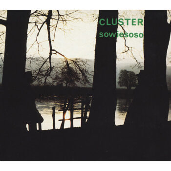 Cluster: Sowiesoso [LP]