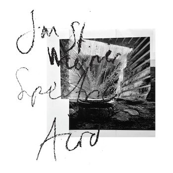 St. Werner, Jan: Spectric Acid [CD]