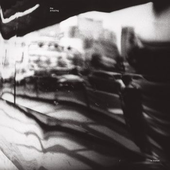 Amazing, The: In Transit [CD]