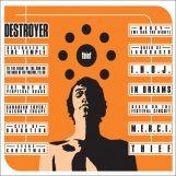 Destroyer: Thief [LP]