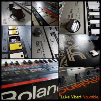 "Vibert, Luke: Valvable [2x12""]"