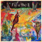 Branch, Jaimie: FLY or DIE II: bird dogs of paradise [CD]