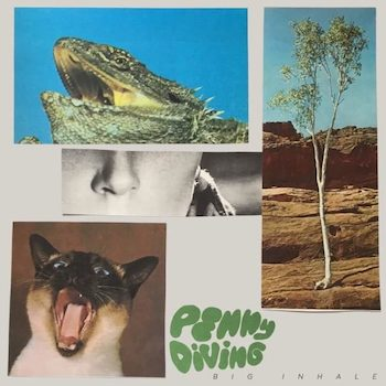 Penny Diving: Big Inhale [LP]