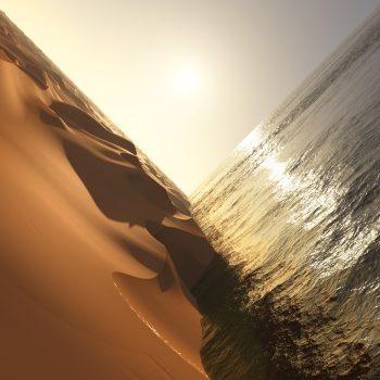 Pritchard, Mark: Under the Sun [CD]