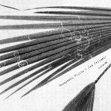 Masayoshi Fujita & Jan Jelinek: Schaum [LP]
