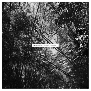 Pekler, Andrew: Tristes tropiques [LP]
