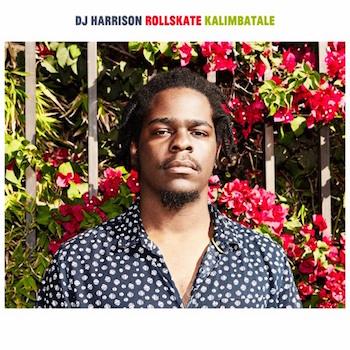 DJ Harrison: HazyMoods [LP]