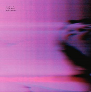 Kettenkarussell: Insecurity Guard [2xLP]