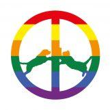 Hype Williams: Rainbow Edition [LP]