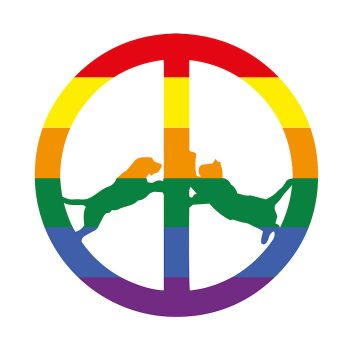 Hype Williams: Rainbow Edition [LP]