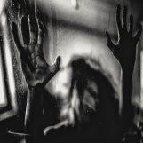 Behind The Shadow Drops: H a r m o n i c [CD]