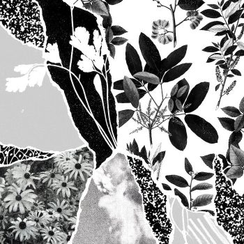 Ponctuation: Mon herbier du monde entier [CD]