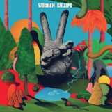 Wooden Shjips: V. [CD]