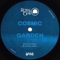 """Cosmic Garden: Pleasure Moment [12""""]"""