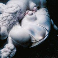 "Björk: Arisen My Senses - incl. remixes par Lanark Artefax, Jlin & K.L. Owens [12""]"