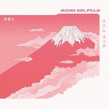 Susumu Yokota: Acid Mt. Fuji [2xLP]