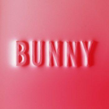Dear, Matthew: Bunny [CD]
