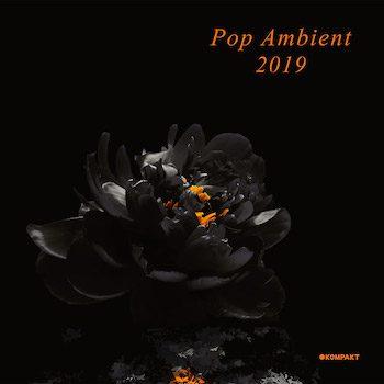 variés: Pop Ambient 2019 [CD]