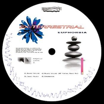 "Ex-Terrestrial: Euphorbia [12""]"