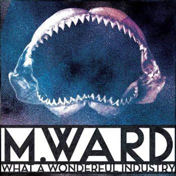 Ward, M.: What a Wonderful Industry [LP transparent]