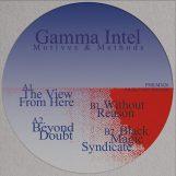 """Gamma Intel: Motives & Methods [12""""]"""
