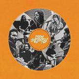 Drugdealer: Raw Honey [CD]