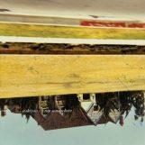 Siskiyou: Not Somewhere [LP 180g]