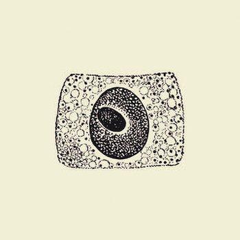 Coil: Porto [CD]