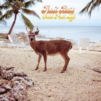 Fruit Bats: Gold Past Life [CD]