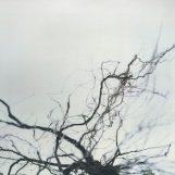 Yutaka Hirose: Nova [2xLP]