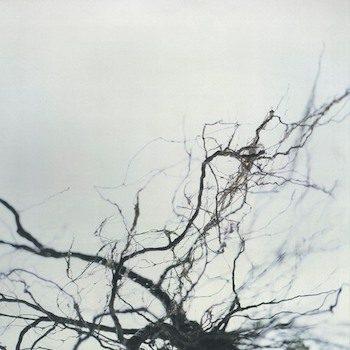 Yutaka Hirose: Nova [CD]