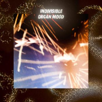 Organ Mood: Indivisible [LP]
