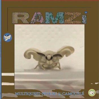 RAMZi: Multiquest Niveau 1: Camouflé [LP]
