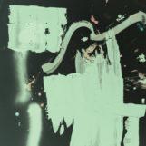 TR/ST: The Destroyer – 2 [CD]