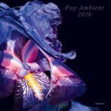 variés: Pop Ambient 2020 [CD]