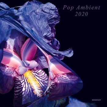 variés: Pop Ambient 2020 [CD]