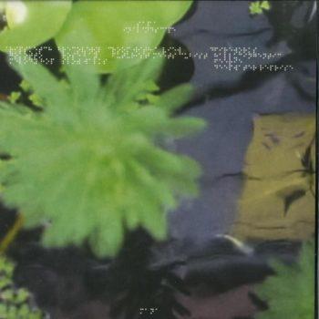 Sa Pa: In A Landscape [2xLP]