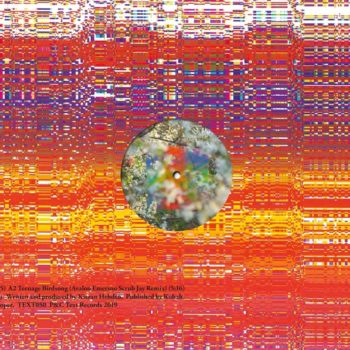 "Four Tet: Teenage Birdsong [12""]"