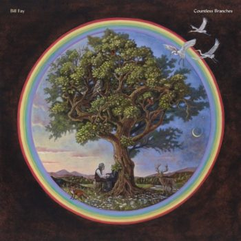 Fay, Bill: Countless Branches [2xLP]