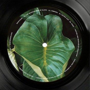 "Edanticonf: The Metamorphosis of Plants [12""]"