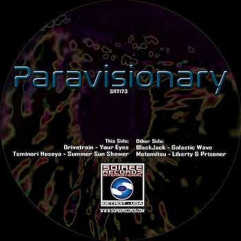 """variés: Paravisionary [12""""]"""