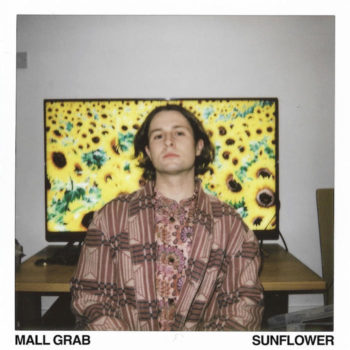 "Mall Grab: Sunflower [12""]"