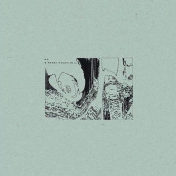 U: Lowlands [LP]