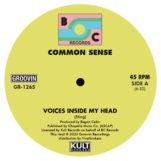 "Common Sense: Voices Inside My Head [12""]"