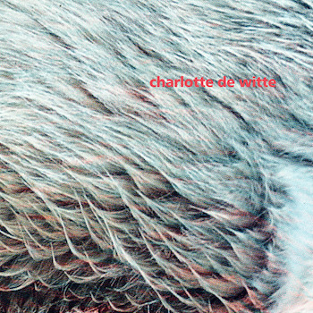 "De Witte, Charlotte: Vision EP - incl. remix par Kangding Ray [12""]"
