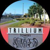 "SFV Acid: Trillium Towers Vol. 2 [12""]"